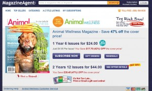 MagazineAgent Review